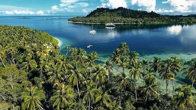 6 Fakta Menarik Kepulauan Mentawai, Pemilik Tato Tertua di Dunia dan Surga  Peselancar - Lifestyle Liputan6.com
