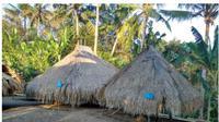 Masyarakat adat suku Blolong yang mendiami Desa Lolong, Kecamatan Nagawutung, Kabupaten Lembata, NTTmemiliki kampung adat yang berada di wilayah perbukitan tepat di belakang desa ini.
