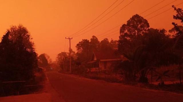 Potret Langit Merah di Jambi Akibat Kabut Asap, Siang Gelap Bak Malam Hari (Liputan6/Gresi Plasmanto)