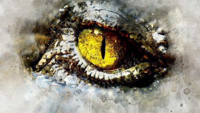 Ilustrasi mata reptil (pixabay)