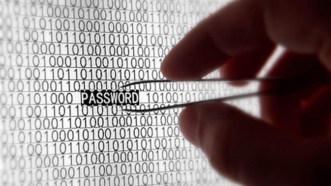 Ilustrasi password.