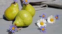 Ilustrasi buah pir. (Gambar oleh Couleur dari Pixabay)