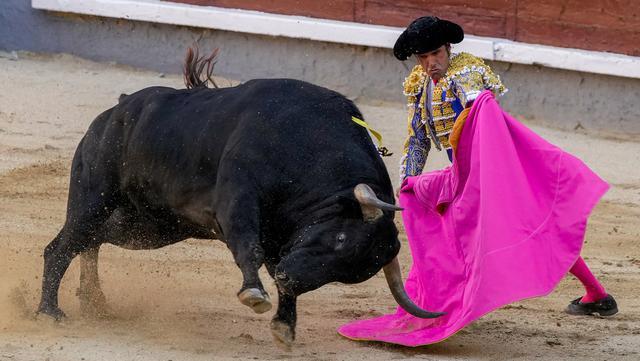 Matador Emilio de Justo saat adu banteng di arena adu banteng Las Ventas, Madrid, Spanyol, Minggu (4/7/2021). Adu banteng ini berlangsung di tengah pandemi virus corona COVID-19. (AP Photo/Manu Fernandez)