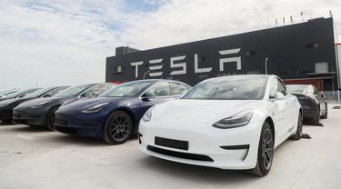 Mobil Tesla made-in-China akan diekspor ke Eropa