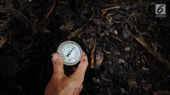 Sampah Organik adalah Sampah yang Berasal dari Makhluk Hidup, Berikut Penjelasannya