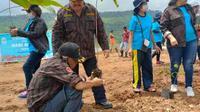 KBPP Polri Sikka, melakukan penanaman ratusan anakan di areal Bendungan Napun Gete, Desa Ilin Medo, Kecamatan Waiblama Kabupaten Sikka. (Liputan6.com/ Dionisius Wilibardus)