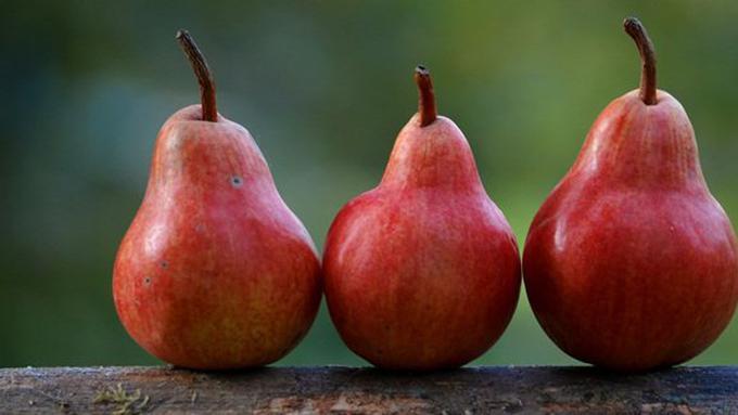 Image result for buah pir kulit merah