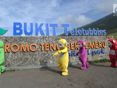 Warga berkostum teletubbies berjalan menghibur wisatawan di Bukit Teletubies kawasan Taman Nasional Bromo Tengger Semeru (TNBTS), Jawa Timur, Selasa (26/3). Kegiatan yang berlangsung sejak sekitar 1,5 bulan lalu ini dilakukan warga asli Tengger dengan seizin pihak TNBTS. (merdeka.com/Arie Basuki)