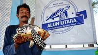 Zulkarnedi, penyelamat Penyu Laut atau Katung di Desa Pekik Nyaring Bengkulu Tengah (Liputan6.com/Yuliardi Hardjo)