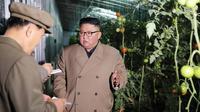 Pemimpin Korea Utara Kim Jong-un berbicara dengan ajudannya  saat mengunjungi Jungphyong Vegetable Greenhouse Farm and Tree Nursery yang sedang dibangun di Kyongsong, Korea Utara, Jumat (18/10/2019). Kunjungan tersebut untuk memastikan pasokan makanan stabil. (KCNA VIA KNS/AFP)
