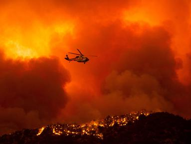 Helikopter bersiap untuk menjatuhkan air ke api yang membakar Hutan Nasional Angeles di California, Amerika Serikat, Rabu (12/8/2020). Kebakaran yang diberi nama Lake Fire tersebut terjadi di sekitar Danau Hughes. (AP Photo Ringo H.W. Chiu)