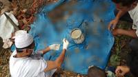 Tulang-belulang diduga manusia yang ditemukan dalam perut buaya berukuran 4,20 meter setelah dibedah. (Foto: Ruzi/Batamnews)
