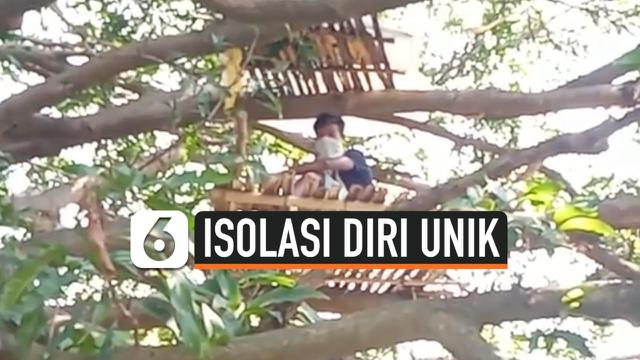 thumbnail isolasi di atas pohon