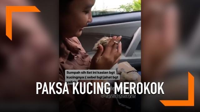 Seorang gadis tega memaksa kucingnya merokok. Momen tersebut tersebar di dunia maya.