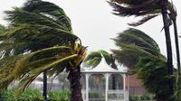 Hujan disertai angin kencang melanda Brisbane, Australia, pada awal Desember 2018 (AFP)
