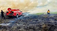 Pemadaman kebakaran lahan hutan di Taman Nasional Rawa Aopa Bombana.(Liputan6.com/Ahmad Akbar Fua)
