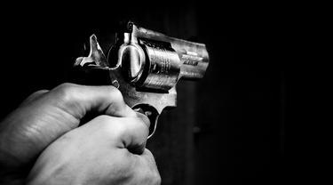 Ilustrasi pistol (pixabay)