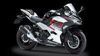 Gambar terbaru Ninja 250 akhirnya bocor di media sosial (Motorbeam)