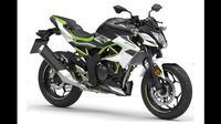 Kawasaki Z125 (News.maxabout.com)
