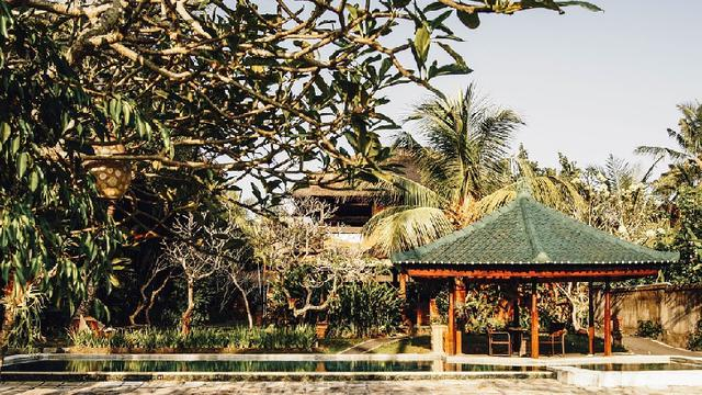Desain Cantik Taman Tropis Minimalis Di Rumah Properti Liputan6 Com