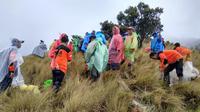 Tim SAR gabungan mengevakuasi jenazah yang ditemukan di Puncak Gunung Sumbing. (Foto: Liputan6.com/Polsek Kalikajar/Muhamad Ridlo)