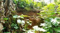 Retakan tanah muncul di tengah permukiman warga Desa Ujungbarang Kecamatan Majenang, Cilacap. (Foto: Liputan6.com/BPBD Cilacap/Muhamad Ridlo)