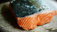 Ilustrasi ikan salmon (Sumber: Pixabay/congerdesign)