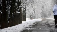 Eropa akan menghadapi musim dingin dengan suhu terendah selama 100 tahun terakhir (foto : abcnews.go.com)