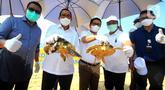 Direktur Utama PT Bank Tabungan Negara (Persero) Tbk. Haru Koesmahargyo (kedua kiri) dan Anggota Komisi XI DPR RI Eriko Sotarduga (kiri), Sekda Kabupaten Badung I Wayan Adi Arnawa (tengah) saat melepas tukik di pantai Nusa Dua, Denpasar Sabtu (10/4/2021). (Liputan6.com/Pool/BTN)