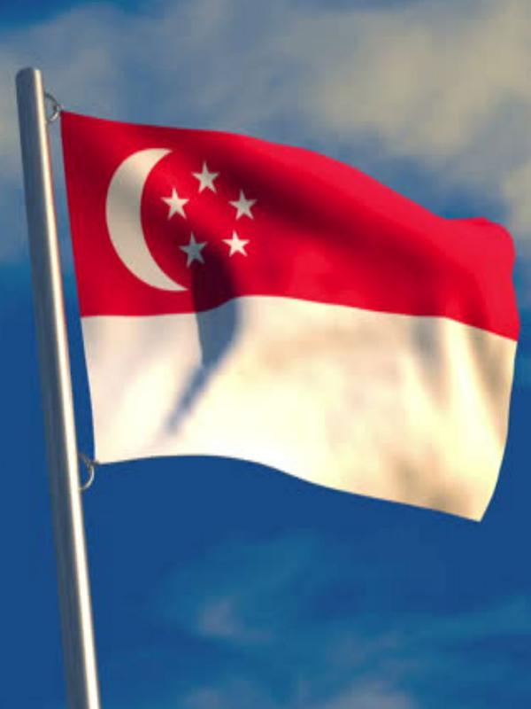 Singapura Pangkas Drastis Prediksi Pertumbuhan Ekonomi 2020 Gara-gara Covid-19