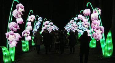 Pengunjung berjalan melewati salah satu set lentera tematik yang dipamerkan dalam festival The Great Lanterns of China di Pakruojis Manor, Lithuania, Rabu (25/12/2019). Festival ini berlangsung hingga 6 Januari 2019. (Petras MALUKAS/AFP)