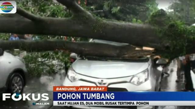 Meski tak ada korban jiwa maupun luka, namun dua dari empat penumpang mobil mengalami trauma hingga harus ditangani petugas medis yang datang ke lokasi.