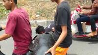 Lumba-lumba terdampar di Pantai Ni'u Bima, Nusa Tenggara Barat (NTB) malah dibonceng menggunakan sepeda motor. (dok. Ist)