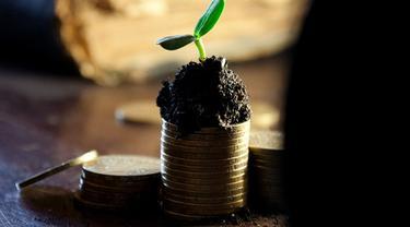 Ilustrasi dividen (image by Alexsander-777 from pixabay)