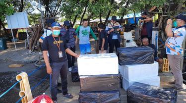KKP melepasliarkan 21 ribu Benih Bening Lobster (BBL) hasil sitaan di Kawasan Konservasi Perairan Bangsring Banyuwangi. (Dok KKP)