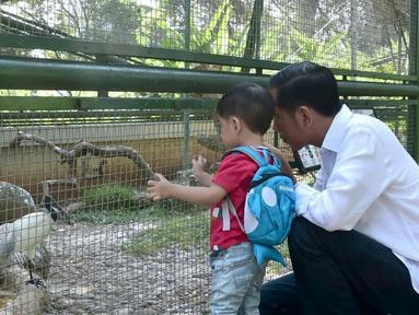 Jokowi Momong Cucu