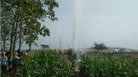 Warga berkerumun di sekitar lahan jagung di dekat lokasi semburan air di Desa Sidolaju, Kecamatan Widodaren, Kabupaten Ngawi, Rabu (8/8 - 2018). (Solopos.com/Madiunpos.com/Abdul Jalil)