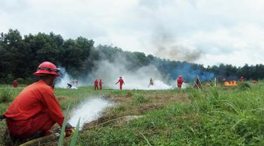 Ratusan Titik Api Tersebar di Ogan Komering Ilir, Ini Kesiapan Satgas Karhutla Sumsel