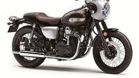 Kawasaki W800 Cafe 2019 (motorcycle.com)