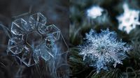 Keren, Fotografer Ini Potret Snow Flake yang 7 Hasilnya Bikin Takjub (sumber: Boredpanda)
