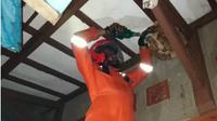 Sepanjang 2019, Ratusan Sarang Tawon Dievakuasi Damkar Kabupaten Bandung. (LIputan6.com/Arie Nugraha)