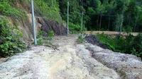 Akses Jalan darat menuju Tanjung Bungsu yang cukup memprihatinkan (Foto: Ruzi/Batamnews)