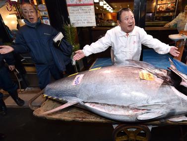 Tuna Sirip Biru