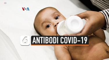 antibodi covid-19