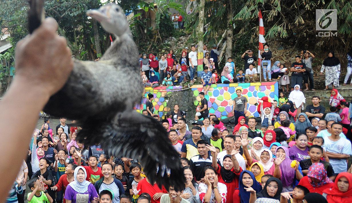 Warga berebut bebek saat perlombaan 17 Agustusan di kampung Warna-Warni, Katulampa, Bogor (17/8). Beragam loma diikuti warga dalam kegiatan Pesta Rakyat memeriahkan HUT Ke73 Republik Indonesia.(merdeka.com/ arie basuki)