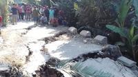 Jalan di Desa Limbangan, Banjarnegara ambles sepanjang 20 meter kedalaman 2 meter dan retak sepanjang 50 meter. (Foto: Liputan6.com/SRU RAPI BNA/Muhamad Ridlo)