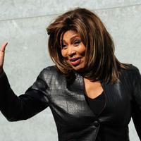 Tina Turner. (GIUSEPPE CACACE / AFP)