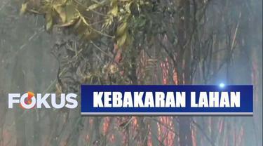 Minimnya sumber air dan kencangnya hembusan air membuat petugas kewalahan memadamkan api.