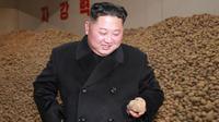 Pemimpin Korea Utara Kim Jong-Un melihat sebuah kentang saat mengunjungi pabrik produksi Samjiyon Potato Farina di Samjiyon County (30/10). (Photo by KCNA VIA KNS / KCNA VIA KNS / AFP)