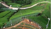 Kawasan Wisata Bukit Panyaweuyan Majalengka yang Dipromosikan Ridwan Kamil. (dok. Instagram @tanahairindah/https://www.instagram.com/p/B0NTrpQBOMx/Henry)